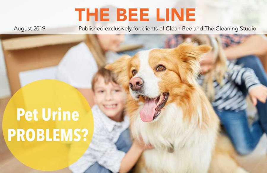 Clean Bee Newsletter August 2019