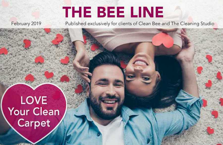 Clean Bee Newsletter February 2019