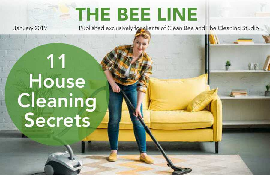 Clean Bee Newsletter January 2019