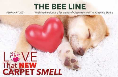 Clean Bee Feb Cover